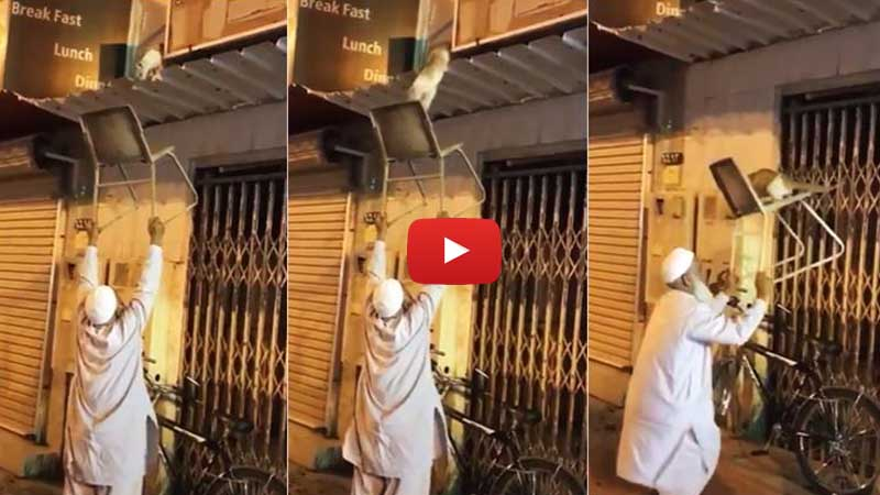 Viral Video of a Man Rescuing Stranded Cat
