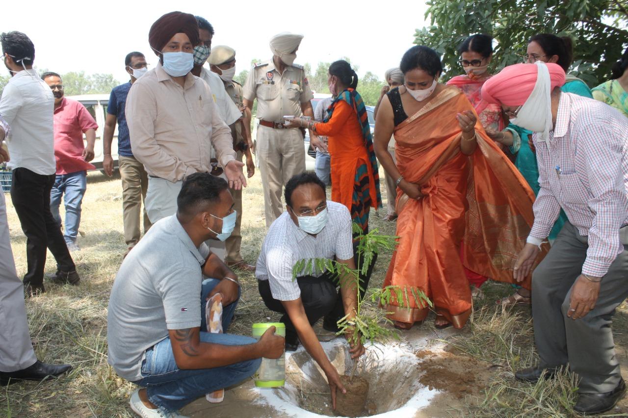 DC Ludhiana initiates mega plantation drive in Govt College for Girls under Mission Tandarust Punjab