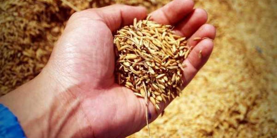 India's first Grain ATM Set up in 'Gurugram'; Dispenses 70 Kgs grain in 5 minutes