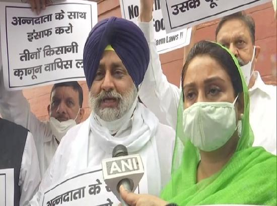 Shiromani Akali Dal stages protest against Centre's farm laws outside Parliament