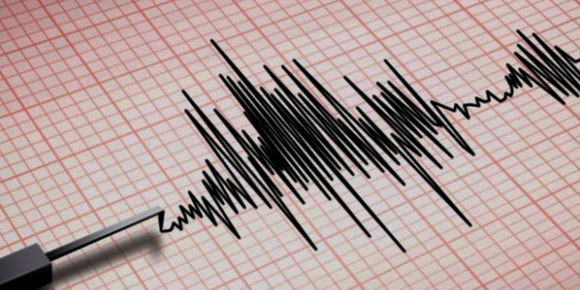 4.6 magnitude earthquake hits Uttarakhand's Joshimath