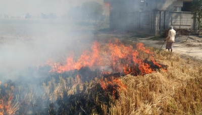 Farm fires from Pakistan to increase air pollution load for Delhi-NCR