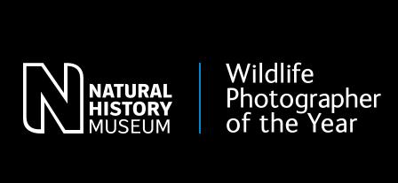 """Explosive Fish Sex"" wins Wildlife Photographer Award 2021, 10-year Indian tops junior category"