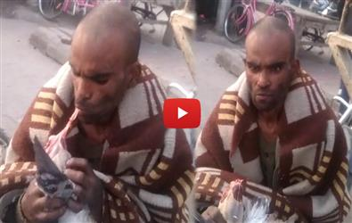 Man In Amritsar Eats Peigon Alive Out of Hunger. Video goes Viral