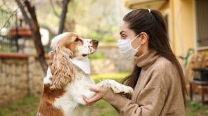 Do you have a pet? Well, get one now because Study shows that having pet improves mental health