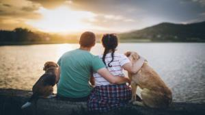 Furs and cuddles: pets played a lifesaving role during Coronavirus pandemic: Study